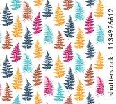 fern frond herbs  tropical... | Shutterstock .eps vector #1134926612