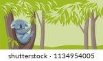 Banner Koala Sitting On A...