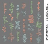floral elements for brushes.... | Shutterstock .eps vector #1135025012