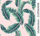 tropical vector banana leaves... | Shutterstock .eps vector #1135064048