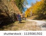 ramet  romania   october 19 ...   Shutterstock . vector #1135081502