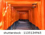 red tori gate of fushimi inari... | Shutterstock . vector #1135134965