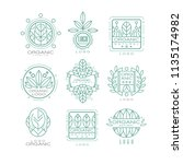 vector set of original organic... | Shutterstock .eps vector #1135174982