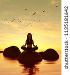 3d illustration of silhouette...   Shutterstock . vector #1135181642