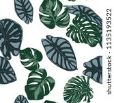 vector tropic seamless pattern. ... | Shutterstock .eps vector #1135193522
