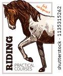 design for horse riding poster... | Shutterstock .eps vector #1135315262