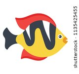 a freshwater tropical fish... | Shutterstock .eps vector #1135425455