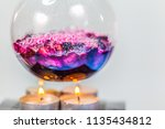 boiling blueberry in laboratory ... | Shutterstock . vector #1135434812