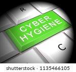 cyber hygiene healthy data... | Shutterstock . vector #1135466105