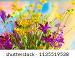 a bouquet of wild flowers. | Shutterstock . vector #1135519538