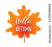 hello autumn on maple leaf... | Shutterstock .eps vector #1135549445