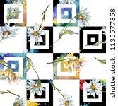 white daisy flower. floral... | Shutterstock . vector #1135577858
