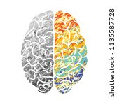 gray and color human brain... | Shutterstock .eps vector #1135587728