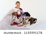 young vet checks dogs mouth.... | Shutterstock . vector #1135591178