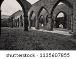ruins of the abbey in the... | Shutterstock . vector #1135607855