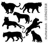 tiger silhouette set. vector... | Shutterstock .eps vector #1135622318