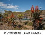 hole in the wall eastern cape... | Shutterstock . vector #1135633268