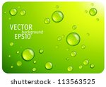 Clear Green Water Drops. Vecto...