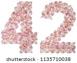 arabic numeral 42  forty two ... | Shutterstock . vector #1135710038