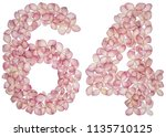 arabic numeral 64  sixty four ... | Shutterstock . vector #1135710125