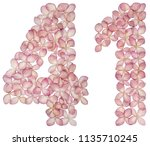 arabic numeral 41  forty one ... | Shutterstock . vector #1135710245