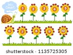 math number on flowers... | Shutterstock .eps vector #1135725305