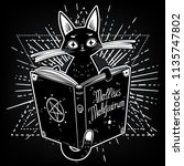 black witch's cat reading the... | Shutterstock .eps vector #1135747802