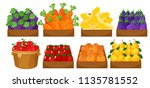 a set of fruits in basket... | Shutterstock .eps vector #1135781552
