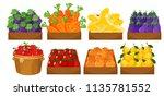 a set of fruits in basket... | Shutterstock .eps vector #1135781552