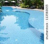 detail of beautiful swimming... | Shutterstock . vector #113583055