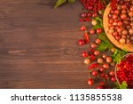 berry summer background with... | Shutterstock . vector #1135855538