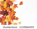 autumn composition. frame made... | Shutterstock . vector #1135860455