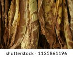 dry tobacco in the store | Shutterstock . vector #1135861196