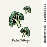 hand drawn vector illustration...   Shutterstock .eps vector #1135885862