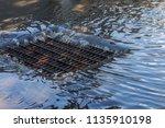 flow of water during heavy rain ... | Shutterstock . vector #1135910198