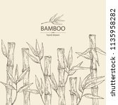 background with bamboo  bamboo... | Shutterstock .eps vector #1135958282