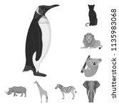 different animals monochrome...   Shutterstock . vector #1135983068