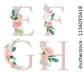 floral alphabet set   letters e ... | Shutterstock . vector #1136093618