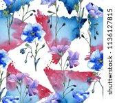 blue flax flower. floral... | Shutterstock . vector #1136127815