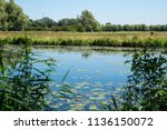 water landscape in  national... | Shutterstock . vector #1136150072