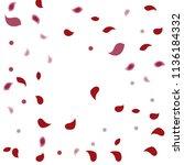 abstract flower petals confetti ... | Shutterstock .eps vector #1136184332