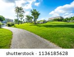 green lawn in the park | Shutterstock . vector #1136185628