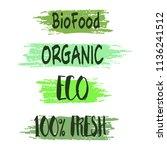 vector hand drawn organic... | Shutterstock .eps vector #1136241512