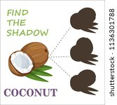 find the right shade nuts. set... | Shutterstock .eps vector #1136301788