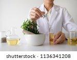 doctor woman scientist making... | Shutterstock . vector #1136341208