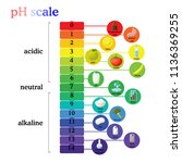 ph scale diagram with... | Shutterstock .eps vector #1136369255