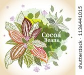 cacao beans plant  vector... | Shutterstock .eps vector #1136441015
