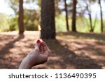 hand holding a match on fire in ... | Shutterstock . vector #1136490395