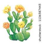 Watercolor Cactus Bunny Ears....