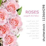 Stock photo wedding background with pink roses and lilac flowers isolated on white with sample text 113664298